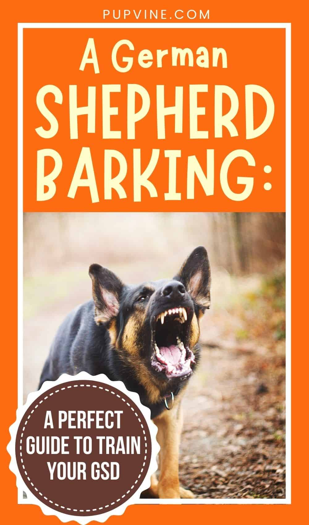 A German Shepherd Barking A Perfect Guide to Train Your GSD