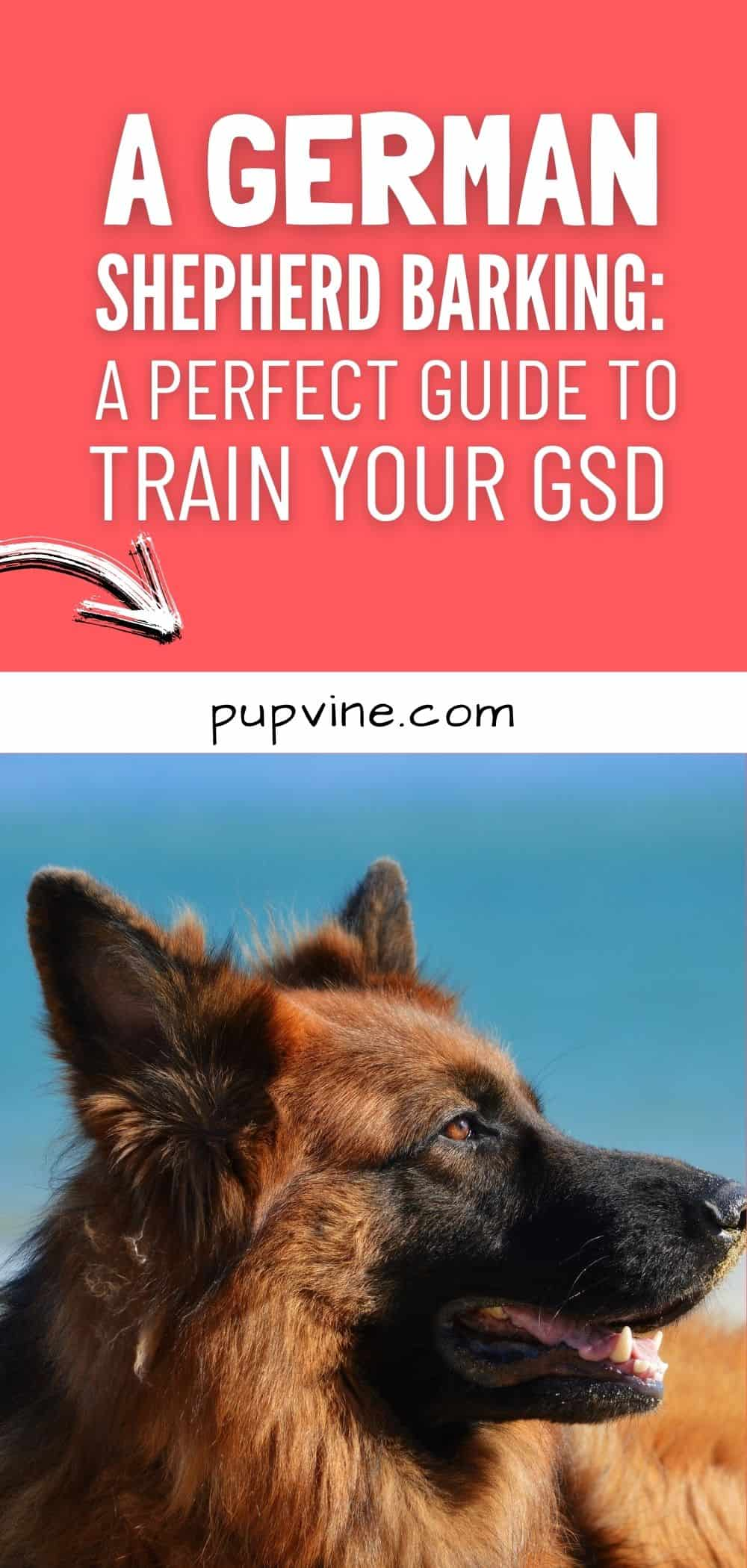 A German Shepherd Barking_ A Perfect Guide to Train Your GSD