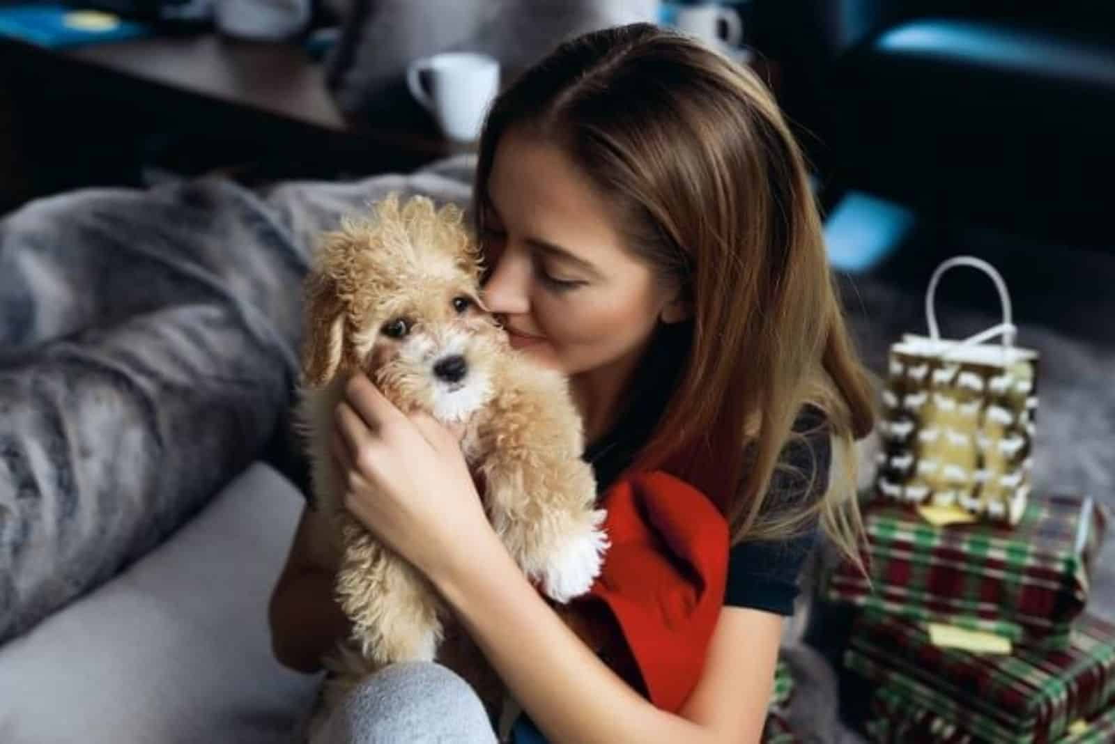 Cavapoo in a woman's arms