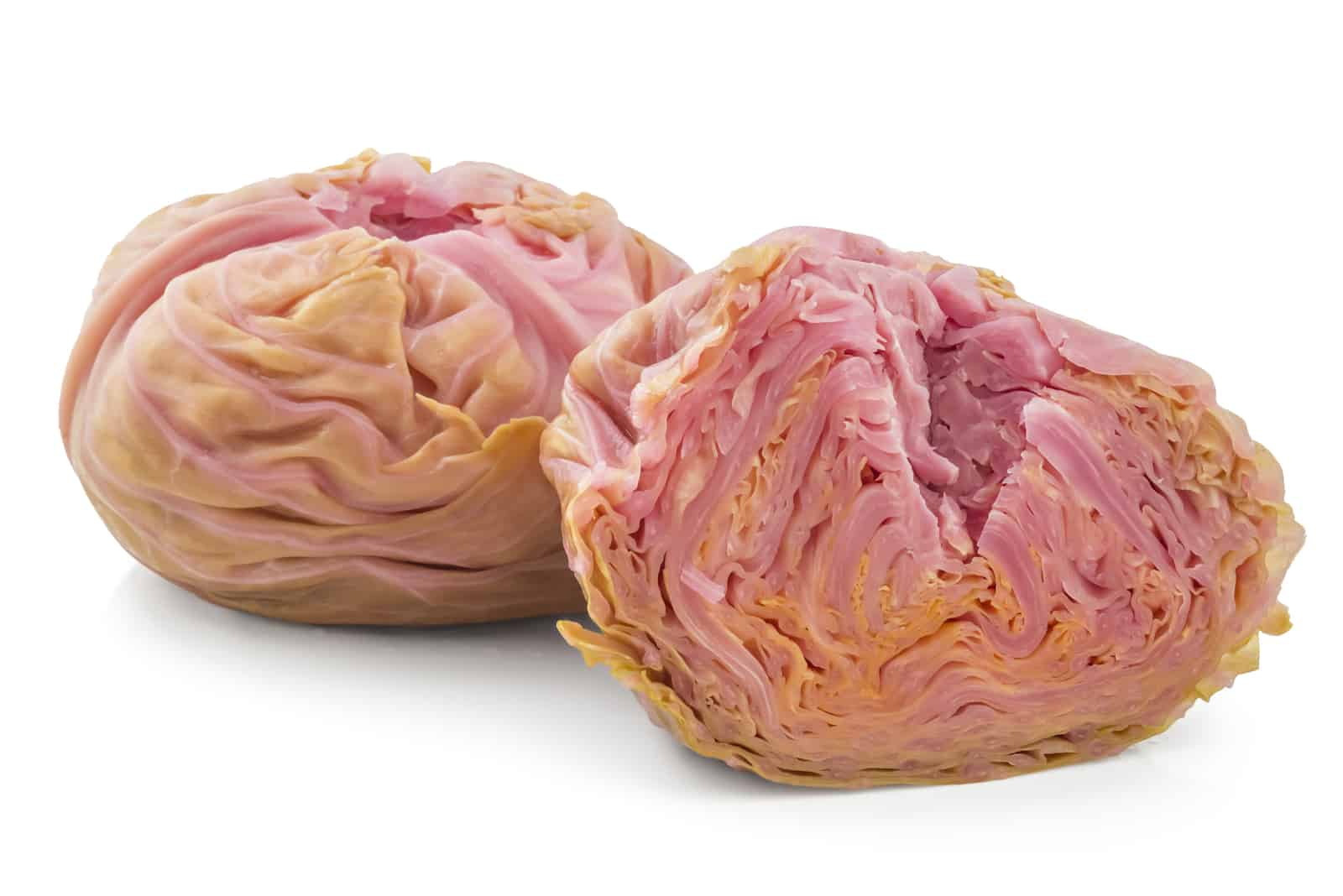 Pickled cabbages heads, one cutted