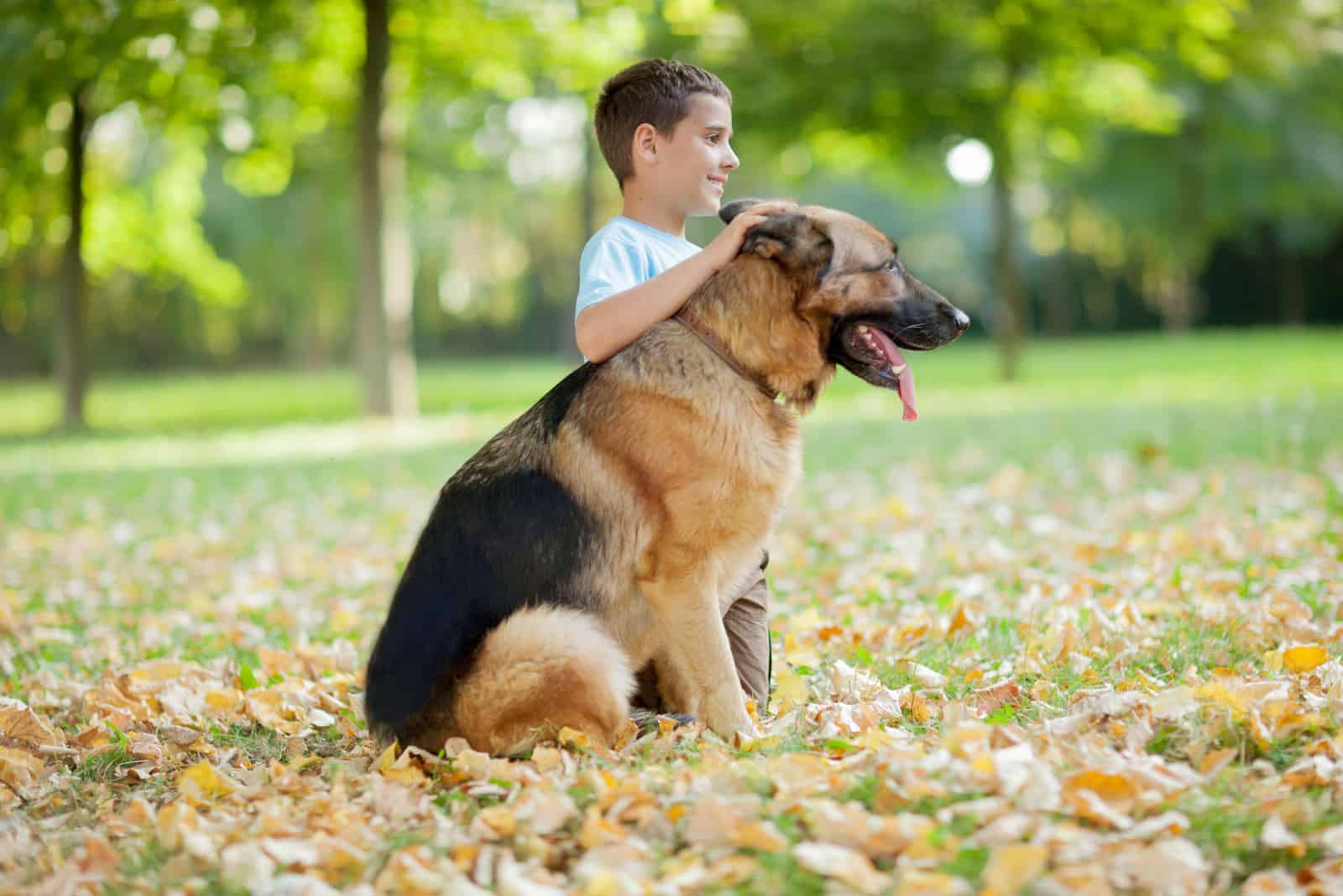 boy relaxing with German Shepherd in park
