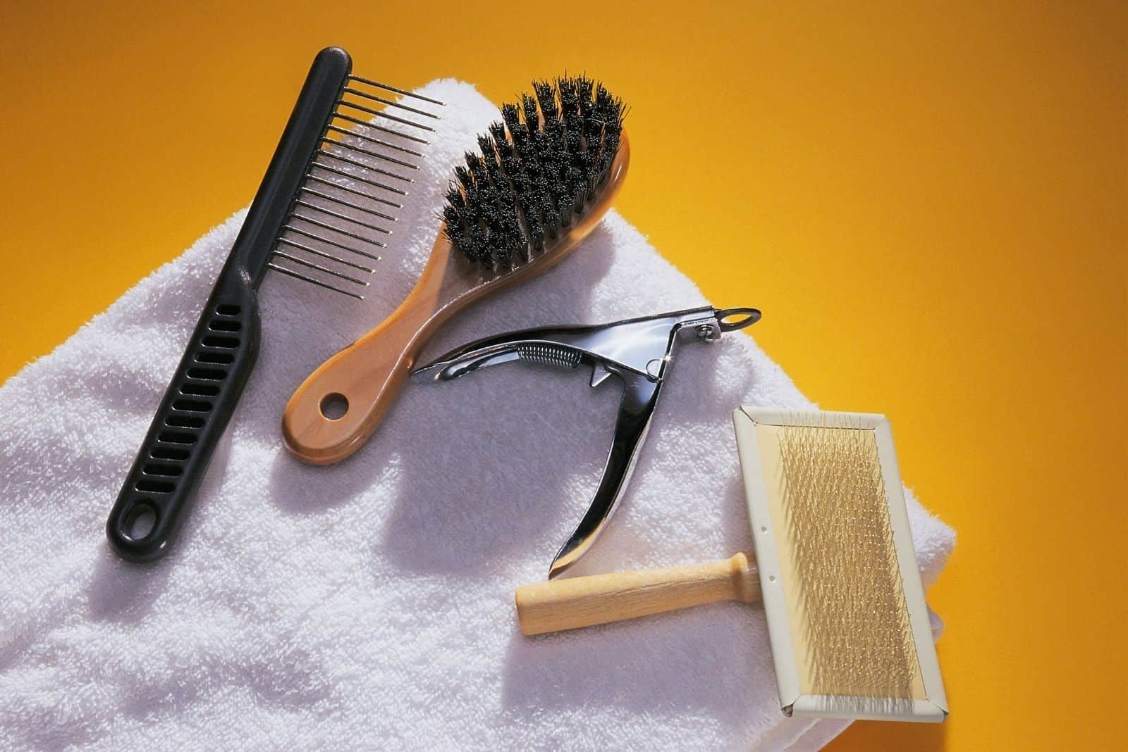 dog grooming tools placed in the white towel