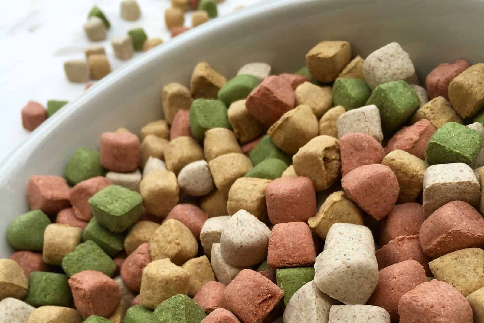 dry dog food in a high angle and close up photography