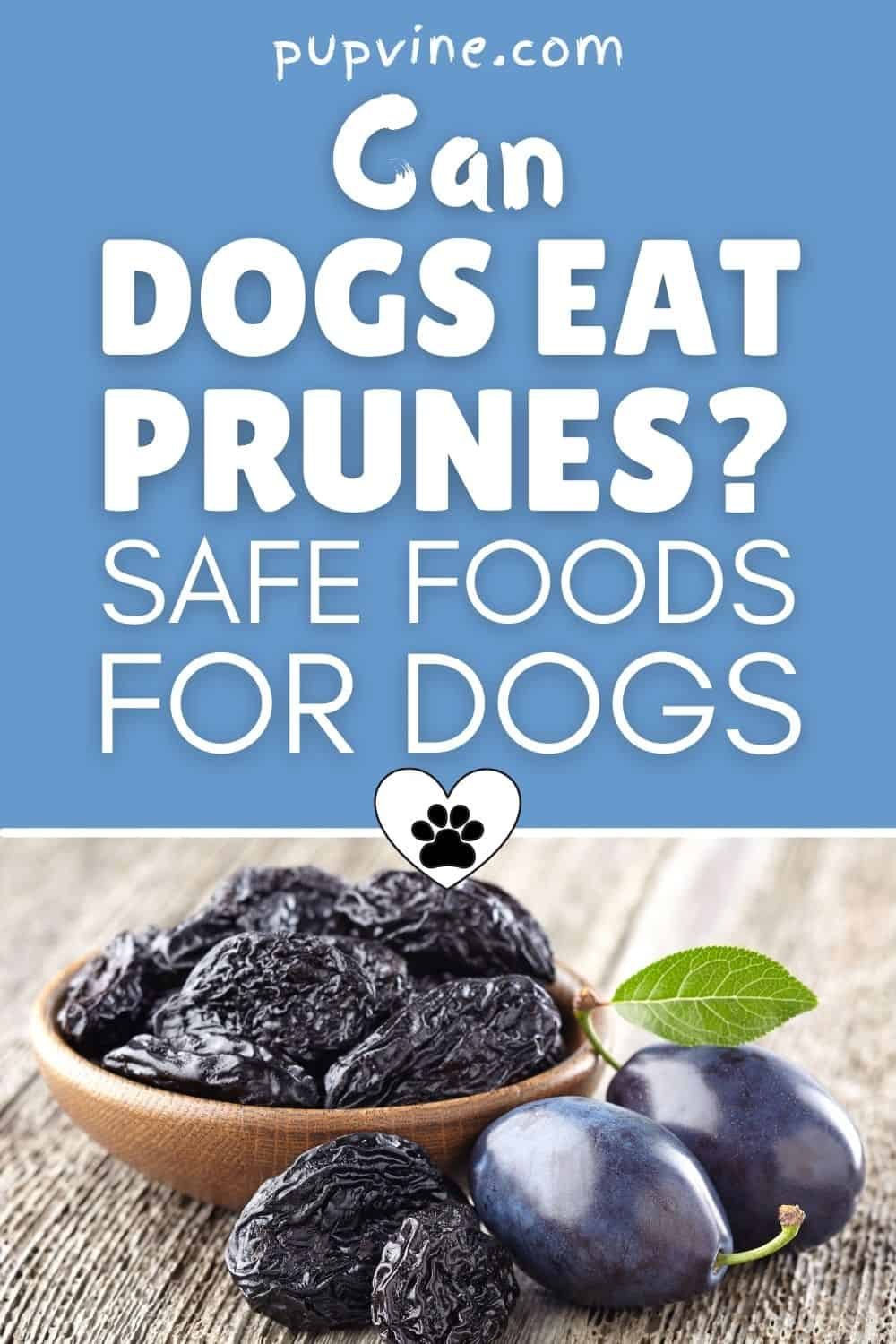 Can Dogs Eat Prunes? Safe Foods For Dogs