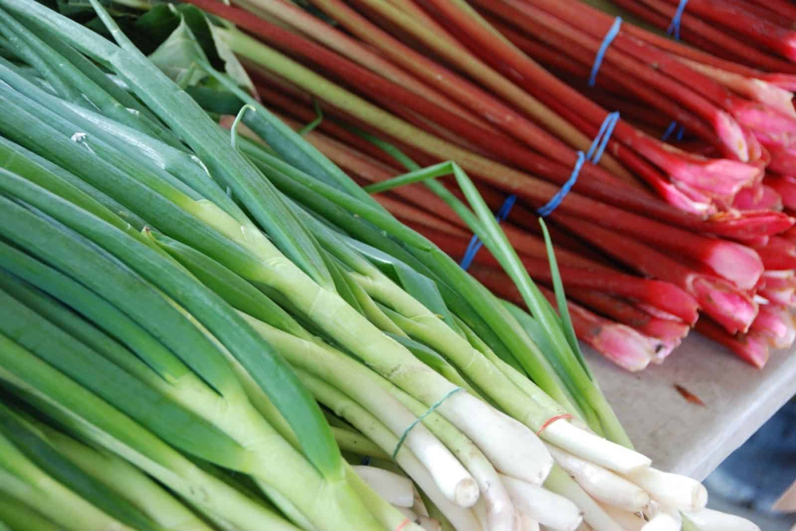 fresh onion and rhubarb in the market
