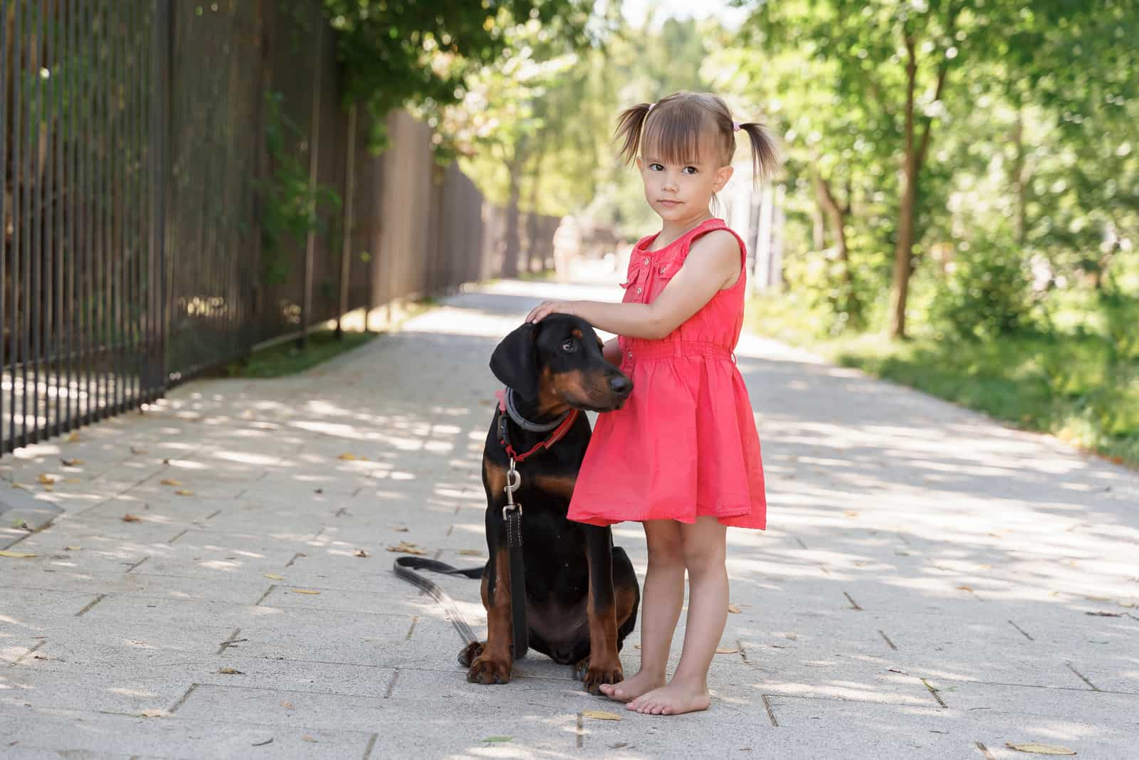 girl with beautiful doberman puppy outdoors