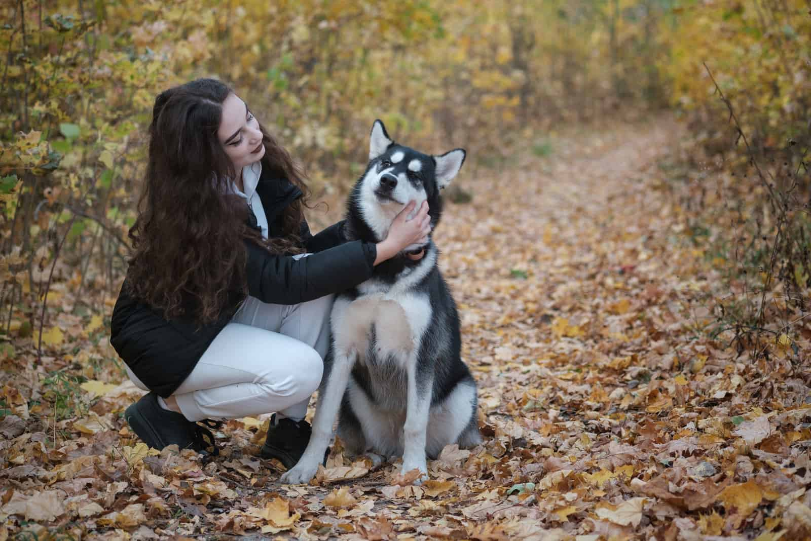 woman with a siberian husky dog in a beautiful autumn park