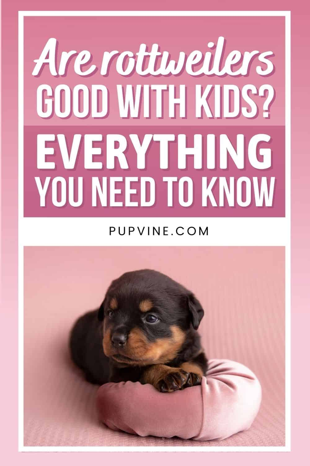 Are Rottweilers Dangerous? How Unsafe Are These Dogs, Really?