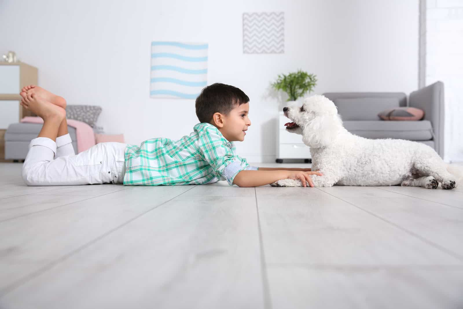 Little boy and bichon frise dog lying on floor at home