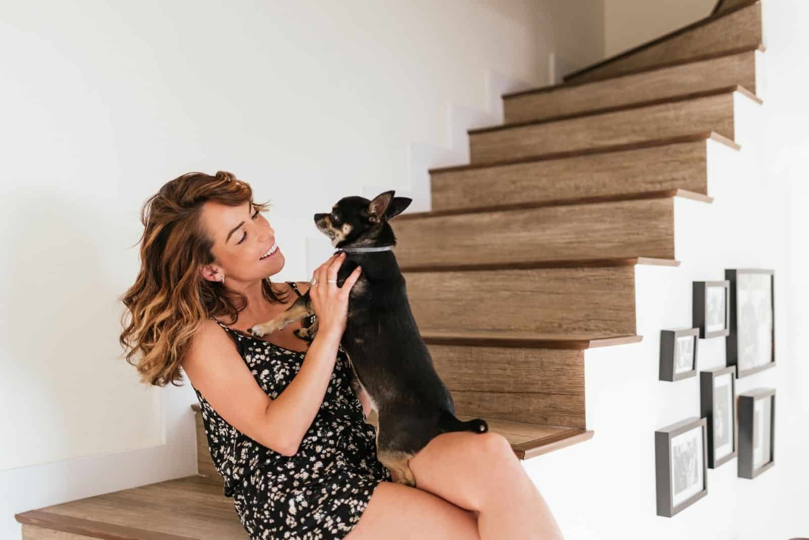 attractive young woman playing a cute chihuahua dog in the indoor stairs
