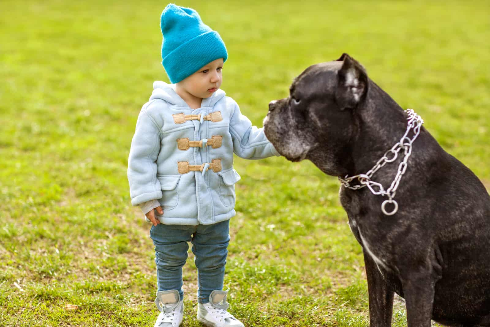 little child with dog outdoors