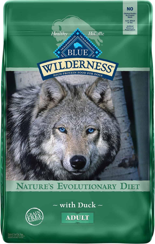 Blue Buffalo Dry Dog Food