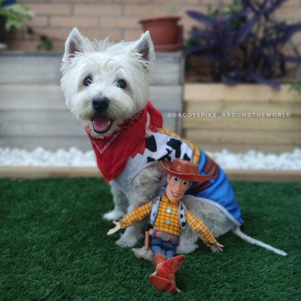 dog in a toy story costume