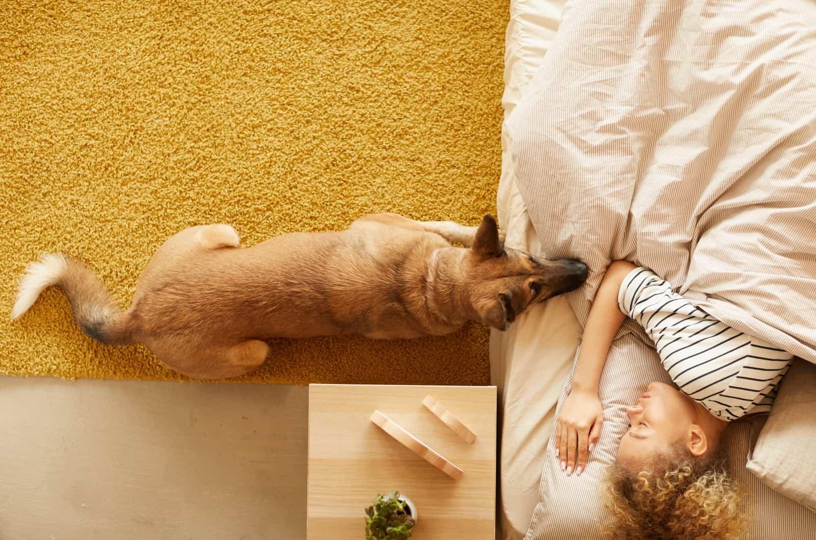 german shepherd next to their owner in bed