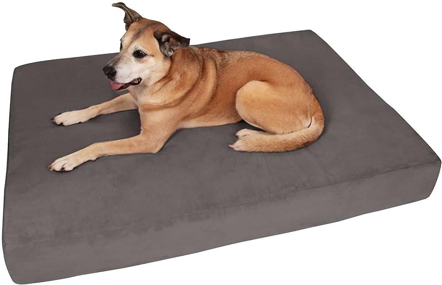"""Big Barker 7"""" Dog Bed"""