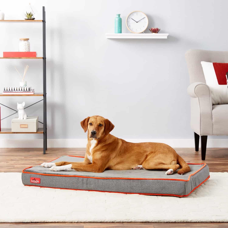 Brindle Waterproof Pillow Bed
