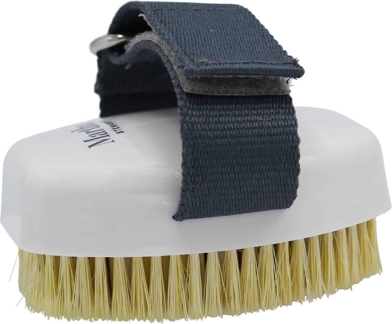Martha Stewart Bristle Brush
